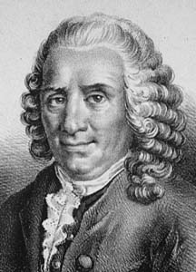 Carolus Linnaeus - biography