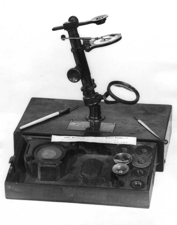 Robert Brown's microscope