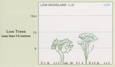 Low Woodland structure