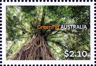 stamp: Ficus virens